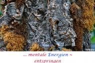 mentale-Energien--entspringen-grenzenlosen-Vorstellungen