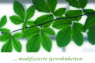 modifizierte-Gewohnheiten-arrangieren-keine-Selbstveraenderung