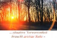 situative-Verworrenheit-braucht-geistige-Ruhe--damit-Licht-sich-durchwinden-kann