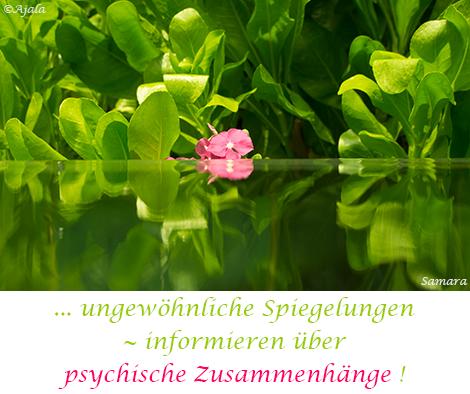 ungewoehnliche-Spiegelungen--informieren-ueber-psychische-Zusammenhaenge